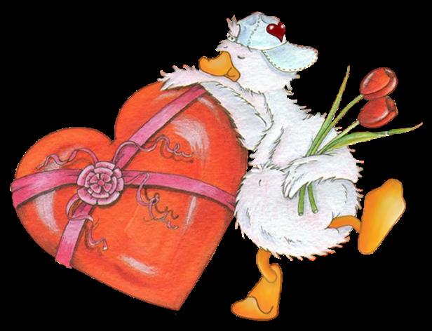 01-Star-ashford-duck-6.png
