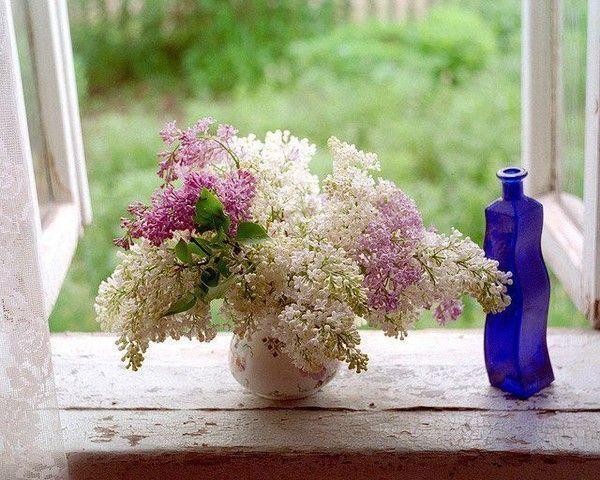 Bouquet de fleurs - Joli bouquet de fleurs ...