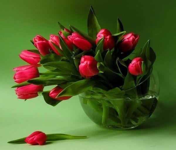 Bouquet de fleurs page 4 - Joli bouquet de fleurs ...