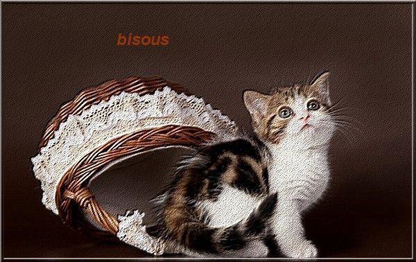bisous a vous