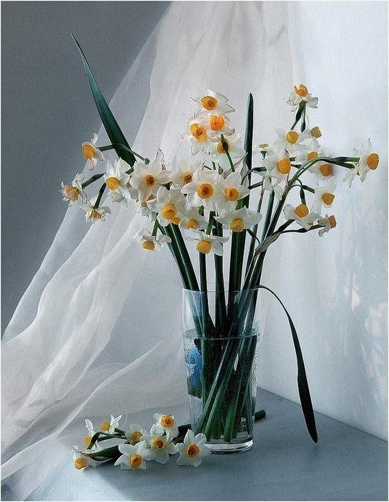 Bouquet de fleurs page 60 - Joli bouquet de fleurs ...