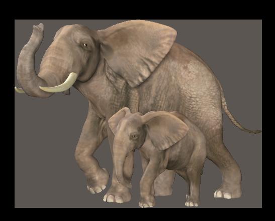 The elephant tube