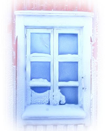Tube fenetre for Fenetre nevada